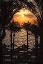 Egypt sunrise the sun rising over palm trees and the beach red sea Stock Photo