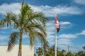 Egyptian flag on flagpole near palms Stock Photos