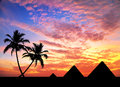 Egyptian pyramids and palm trees in silhouette at orange sunset sky Royalty Free Stock Photography