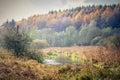 The Eider Autumn