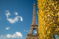 Eiffel Tower over blue sky and fall leaves