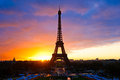 The Eiffel tower, Paris. Royalty Free Stock Images