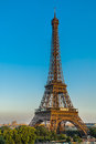 The eiffel tower paris city france in of in Stock Photo