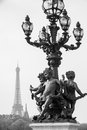 The eiffel tower in paris france black and white Stock Photo