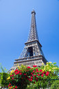 Eiffel tower paris france seen from champ de mars at a sunny summer day Royalty Free Stock Image