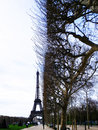 Eiffel tower in paris the is the most famous symbol of Royalty Free Stock Photos