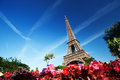 Eiffel tower paris sunny morning and france Stock Photos