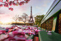 Eiffel Tower during spring time in Paris, France Royalty Free Stock Photo