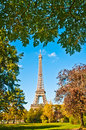 Eiffel tower surrounded by trees view of the in paris framed Royalty Free Stock Images