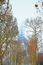 Eiffel Tower in winter Royalty Free Stock Photo