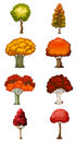 Eight different trees illustration of the on a white background Stock Photography