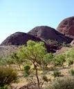 Eine ansicht von kata tjuta australia Stockbilder
