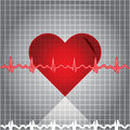 Ekg heart beat Stock Photography