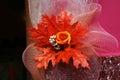 Ekibany of orange flower on purple background Royalty Free Stock Images