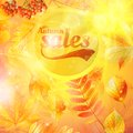 El amarillo de la caída de la venta del otoño deja el fondo de la naturaleza Foto de archivo libre de regalías