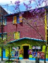 El caminito little walkway or little path in spanish is a street museum and a traditional alley located in la boca a neighborhood Royalty Free Stock Photos