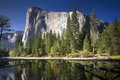 El Capitan reflected in the Merced River, Yosemite National Park, California, USA Royalty Free Stock Photo