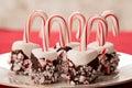 El chocolate sumergió la melcocha y el caramelo cane christmas treats Imagen de archivo libre de regalías