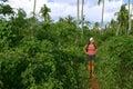 El emigrar a través de la selva 2 Fotografía de archivo libre de regalías