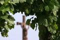 El vino es religión Foto de archivo libre de regalías