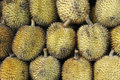 Elai, les fruits tropicaux aiment le fruit de durian Photos stock