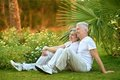 Elder couple on grass Royalty Free Stock Photo