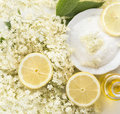 Elder flower sugar and lemon preparation for syrup close up top view Stock Photos