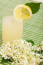 Elderberry flower flavored summer refreshment Royalty Free Stock Photo