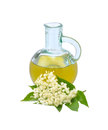 Elderflower cordial elderflowers with bottle of isolated on white background Royalty Free Stock Images