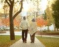 Elderly couple in autumn park happy walking Royalty Free Stock Photo