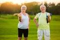 Elderly couple with dumbbells. Royalty Free Stock Photo