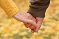Elderly couple holding hands in autumn park Royalty Free Stock Photos
