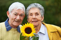 Elderly couple with a sunflower Royalty Free Stock Image