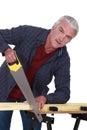 Elderly handyman sawing wood Royalty Free Stock Photo