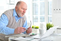 Elderly man with a laptop Royalty Free Stock Photo