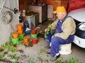 Elderly man plants geranium seedling in pots