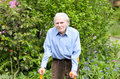 Elderly man using forearm crutches to walk with casual clothes as a mobility aid on the cobblestones of a footpath in a green park Royalty Free Stock Image