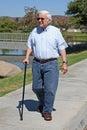 Staršie muž prechádzky trstina