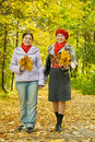Elderly woman and  her adult daughter Royalty Free Stock Image