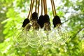 Electric Bulb Garland Hanging In Summer Backyard Garden Royalty Free Stock Photo