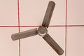 Electric Ceiling Fan Over A Ca...