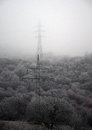 Electric poles in winter Royalty Free Stock Photo