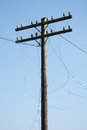 Electric post power pole wire breakage close up on Royalty Free Stock Images