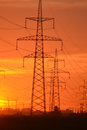 Electric power transmission lines at sunset. Royalty Free Stock Photo