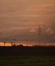Electric powerline above evening fields Royalty Free Stock Photo