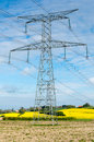 Electric pylon front rapeseed field Stock Image