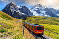 Electric Tourist Train And Eig...
