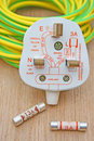 Electrical plug and fuse Royalty Free Stock Images