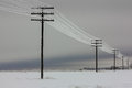 Electrical power lines with hoarfrost on the wooden electric poles on countryside in the winter, Royalty Free Stock Photo