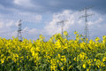 Electrical tower and rapeseed stormy clouds Royalty Free Stock Photo